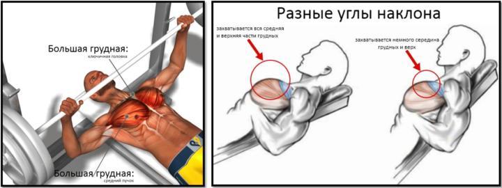 Качаем верх грудных мышц