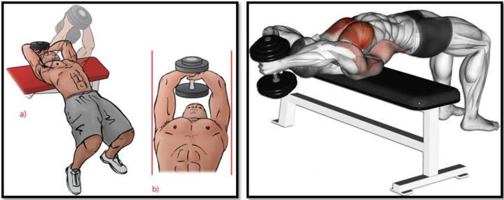 Как накачать грудь дома