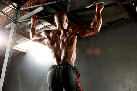 Упражнения мышцы спины
