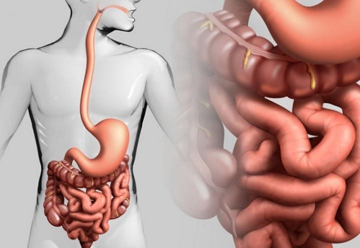 Как опустошить кишечник